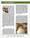 0000085310 Word Templates - Page 3