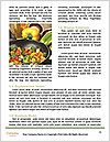 0000085310 Word Templates - Page 4