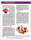 0000085314 Word Templates - Page 3