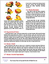 0000085314 Word Templates - Page 4