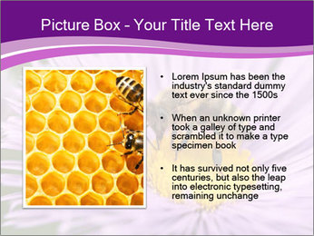 0000085315 PowerPoint Template - Slide 13