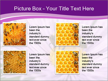 0000085315 PowerPoint Template - Slide 14