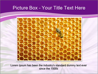 0000085315 PowerPoint Template - Slide 15