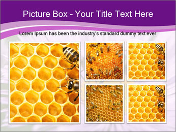 0000085315 PowerPoint Template - Slide 19