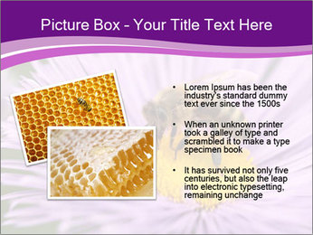 0000085315 PowerPoint Template - Slide 20