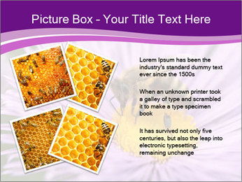 0000085315 PowerPoint Template - Slide 23