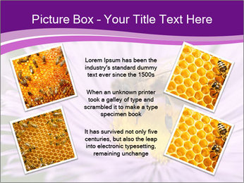 0000085315 PowerPoint Template - Slide 24