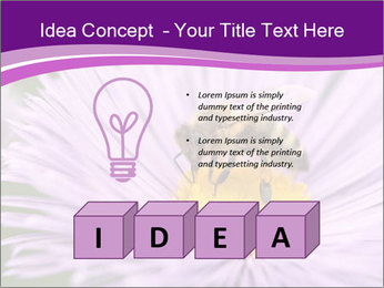0000085315 PowerPoint Template - Slide 80