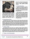 0000085319 Word Templates - Page 4