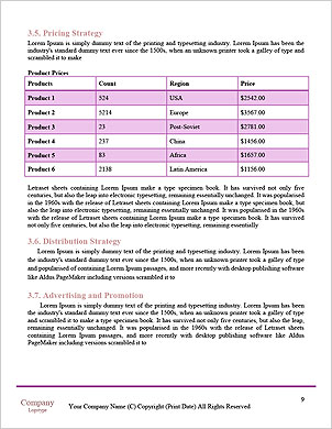 0000085320 Word Template - Page 9