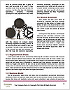 0000085323 Word Templates - Page 4