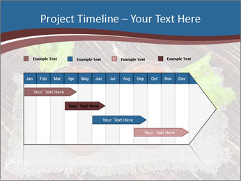 0000085328 PowerPoint Template - Slide 25