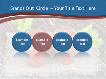 0000085328 PowerPoint Template - Slide 76
