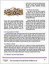 0000085331 Word Template - Page 4