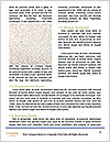 0000085333 Word Templates - Page 4