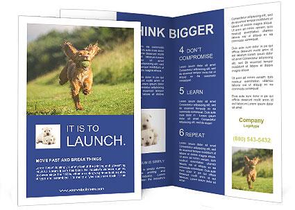 0000085334 Brochure Template