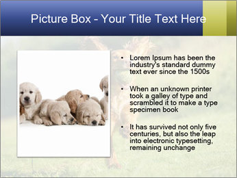 0000085334 PowerPoint Template - Slide 13