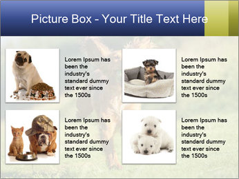 0000085334 PowerPoint Templates - Slide 14