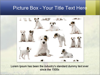 0000085334 PowerPoint Templates - Slide 15
