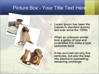 0000085334 PowerPoint Templates - Slide 17