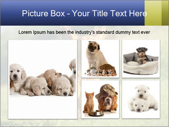 0000085334 PowerPoint Template - Slide 19