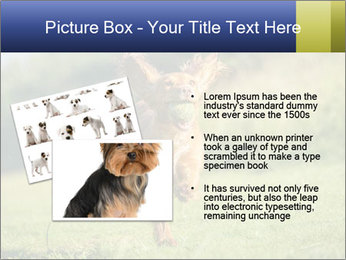 0000085334 PowerPoint Templates - Slide 20