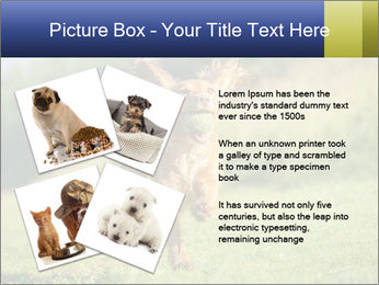 0000085334 PowerPoint Templates - Slide 23