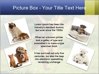 0000085334 PowerPoint Template - Slide 24