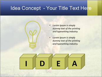 0000085334 PowerPoint Template - Slide 80