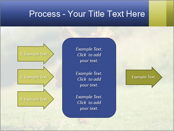0000085334 PowerPoint Templates - Slide 85
