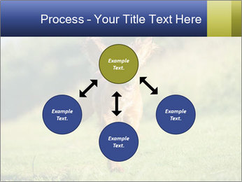 0000085334 PowerPoint Template - Slide 91