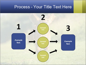 0000085334 PowerPoint Template - Slide 92