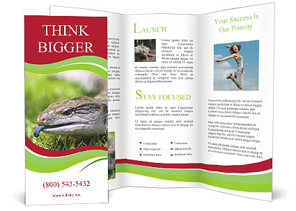 0000085352 Brochure Template