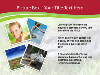 0000085352 PowerPoint Templates - Slide 23