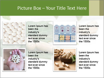 0000085355 PowerPoint Templates - Slide 14