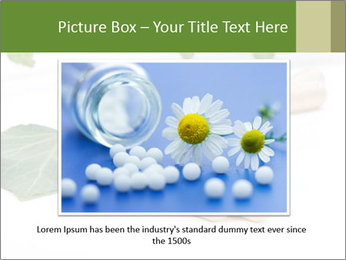 0000085355 PowerPoint Templates - Slide 15
