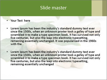 0000085355 PowerPoint Templates - Slide 2