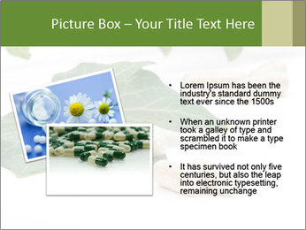 0000085355 PowerPoint Templates - Slide 20