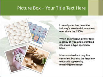 0000085355 PowerPoint Templates - Slide 23