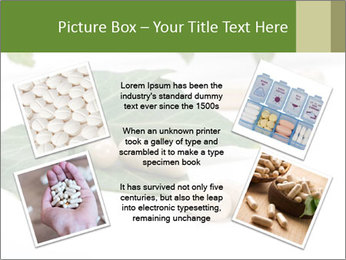 0000085355 PowerPoint Templates - Slide 24