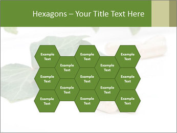 0000085355 PowerPoint Templates - Slide 44