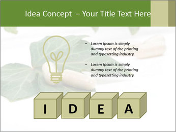 0000085355 PowerPoint Templates - Slide 80