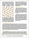 0000085355 Word Templates - Page 4