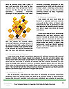 0000085357 Word Templates - Page 4