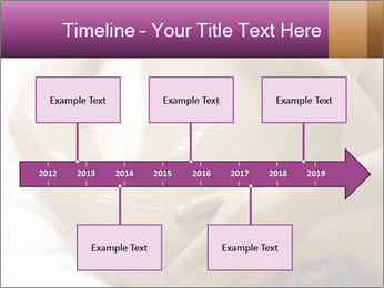 0000085360 PowerPoint Template - Slide 28