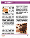0000085360 Word Template - Page 3