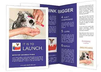 0000085363 Brochure Templates