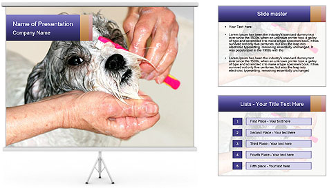 0000085363 PowerPoint Template