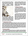 0000085378 Word Template - Page 4