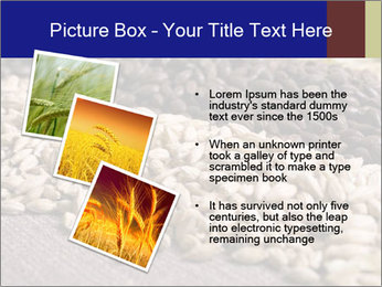 0000085380 PowerPoint Templates - Slide 17